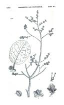 Página 1572