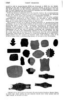 Página 1046