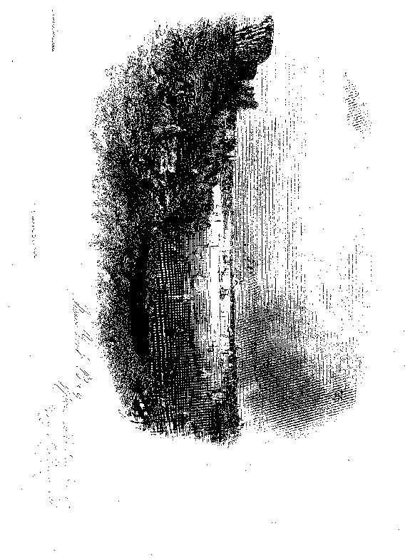 [ocr errors][ocr errors][ocr errors][merged small][ocr errors][ocr errors][graphic][graphic][graphic][graphic]