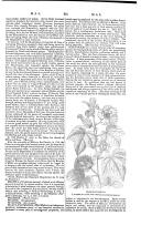 Página 351