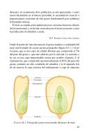 Página 21