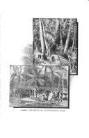 Página 3986