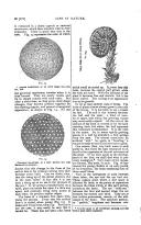 Página 572