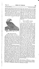 Página 59
