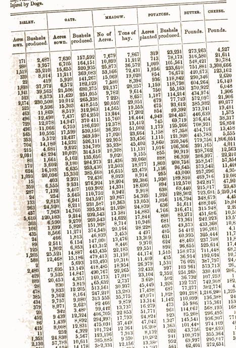 [merged small][ocr errors][merged small][merged small][merged small][merged small][merged small][merged small][merged small][ocr errors][subsumed][ocr errors][ocr errors][ocr errors][ocr errors][ocr errors][ocr errors][ocr errors][ocr errors]