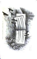 Página 365