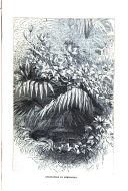 Página 395