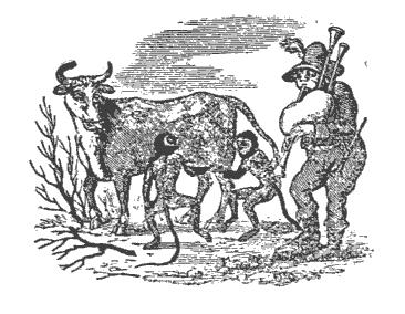 [graphic][ocr errors][subsumed][ocr errors][ocr errors]