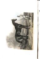 Página 318