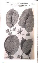 Página 1622