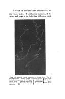 Página 315